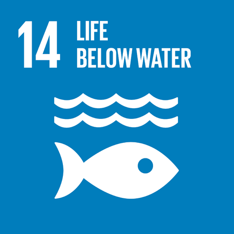 File:E SDG goals icons-individual-rgb-14.png