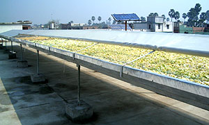 File:Solar tunnel dryer 2.jpg