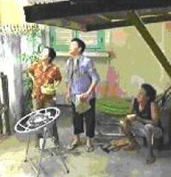Vietnamese TV show 4-11