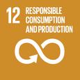 E SDG goals icons-individual-rgb-12