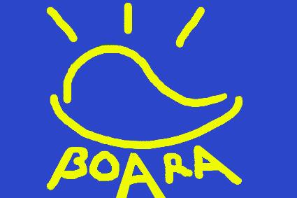 File:Boarafinal.jpg