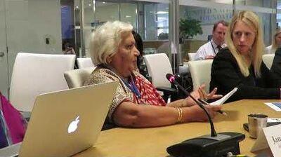 Janak Palta McGilligan speaks at the United Nations 18 July 2017
