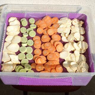16) Légumes avant séchage