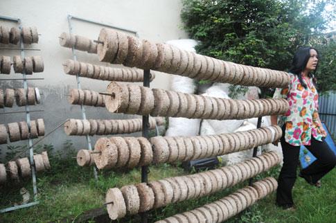 File:Biomass briquettes.jpg