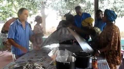 Formazione sull'ambiente e sull'uso di energia alternative in Africa 2