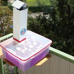 Séchoir en action sur le balcon