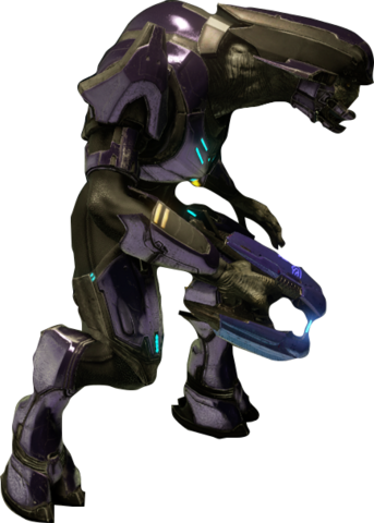 File:Special Operations Sangheili.png