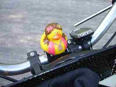File:Hippie duck.jpg