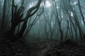 File:Dark Woods - End of the Road.jpeg