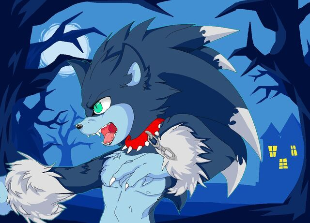 File:Sonic the werehog by nastyathecat-d4clxi2.png.jpg