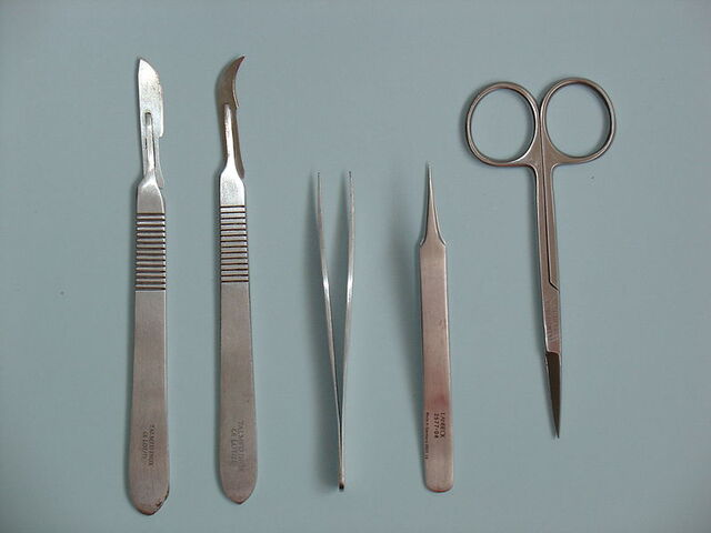 File:Surgical Instruments.jpg