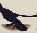 Rocket The Microraptor
