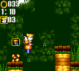 File:Bouncy Jungle Fox.png