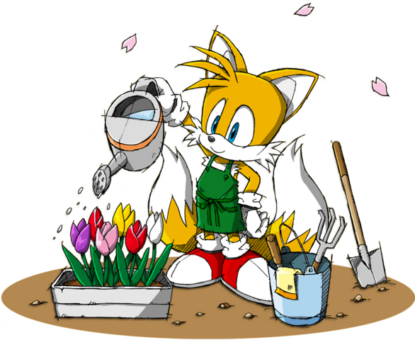 File:Sonic Channel - Miles Tails Prower 2013.png