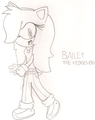 File:Bailey the Hedgehog.png