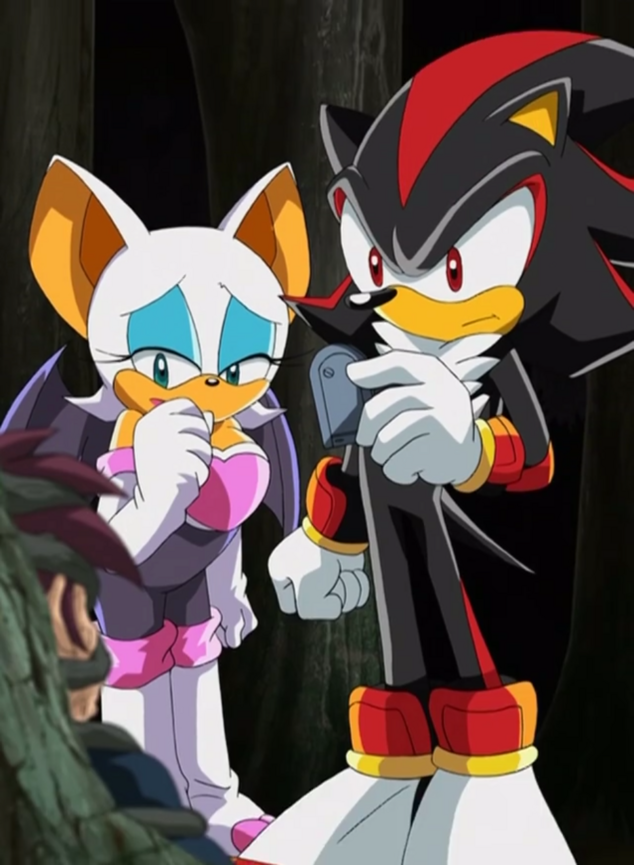 File:Ep72 Shadow and Rouge.png