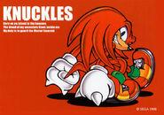 SA Knuckles Original