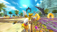 Dolphin Resort Screenshot 5