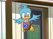 Bird183