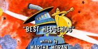 Best Hedgehog