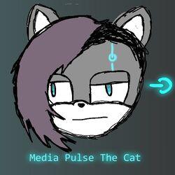 Media Pulsejpg