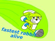Fastest rabbit alive