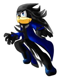 Captain bird-artwork