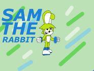 Sam the rabbit (Sonic adventure: battle for Mobius