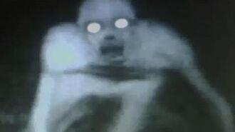 S T A L K E R - Dark Ambient Creepy Horror Chase Tense Music