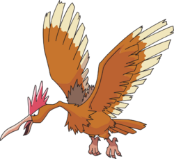 Fearow AG anime