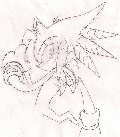 File:Rider of lightning by bolt the echidnahog-d2xnsg2.jpg