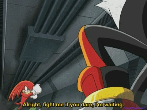 File:Knuckles Vs Shadow.jpg