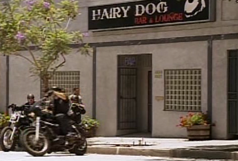 File:Hairy Dog Lounge.PNG