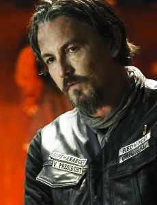 VP CHIBS