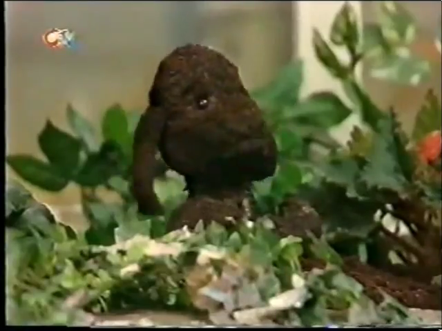 File:1998-09-14 - Sooty and Co - 6x03 - Health Risk - Part 01 of 02 320.png