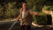 Tony watering lawn