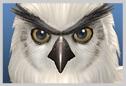 File:Olcadan SClll icono.png