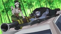 Yumi Weapon Form