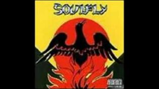 Soulfly - in memory of..