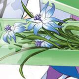 Eight Petal Immortal Orchid Mug