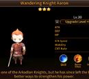Wandering Knight Aaron