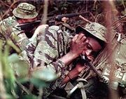 220px-Jungle Combat Vietnam