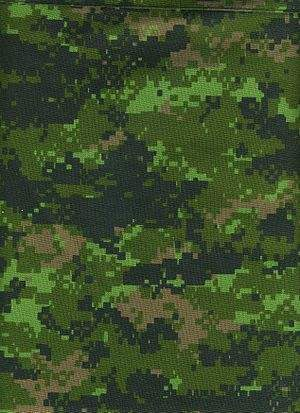 File:300px-CADPAT digital camouflage pattern (Temperate Woodland variant).jpg