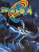 Space jamb