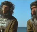 Planet of the Apes (location)