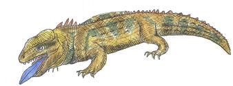 Blue-tongued tuatara