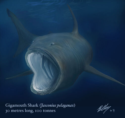File:Gigamouth1.jpg
