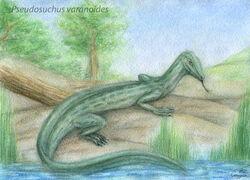 Pssuchus