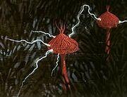 Ectrophytes