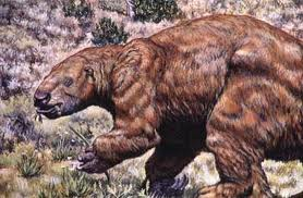 File:Omnivore ground sloth.jpg